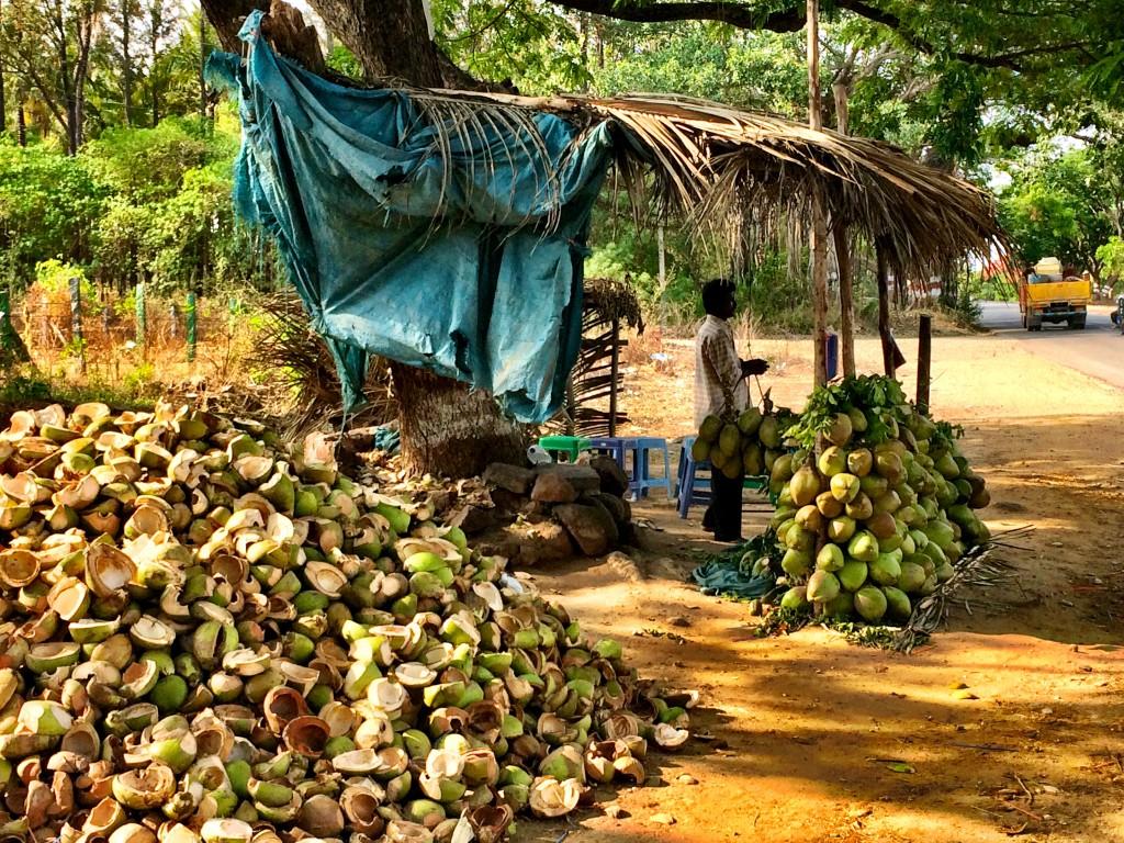 Roadside Coconuts, Bangalore
