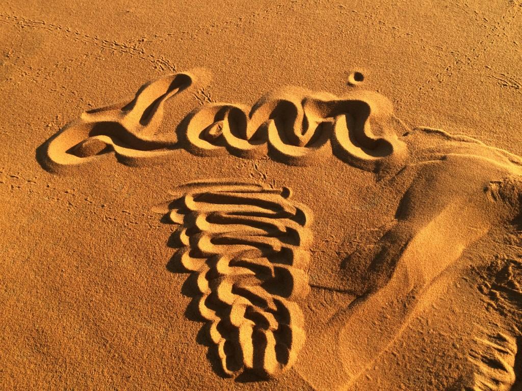 Lavi was here!