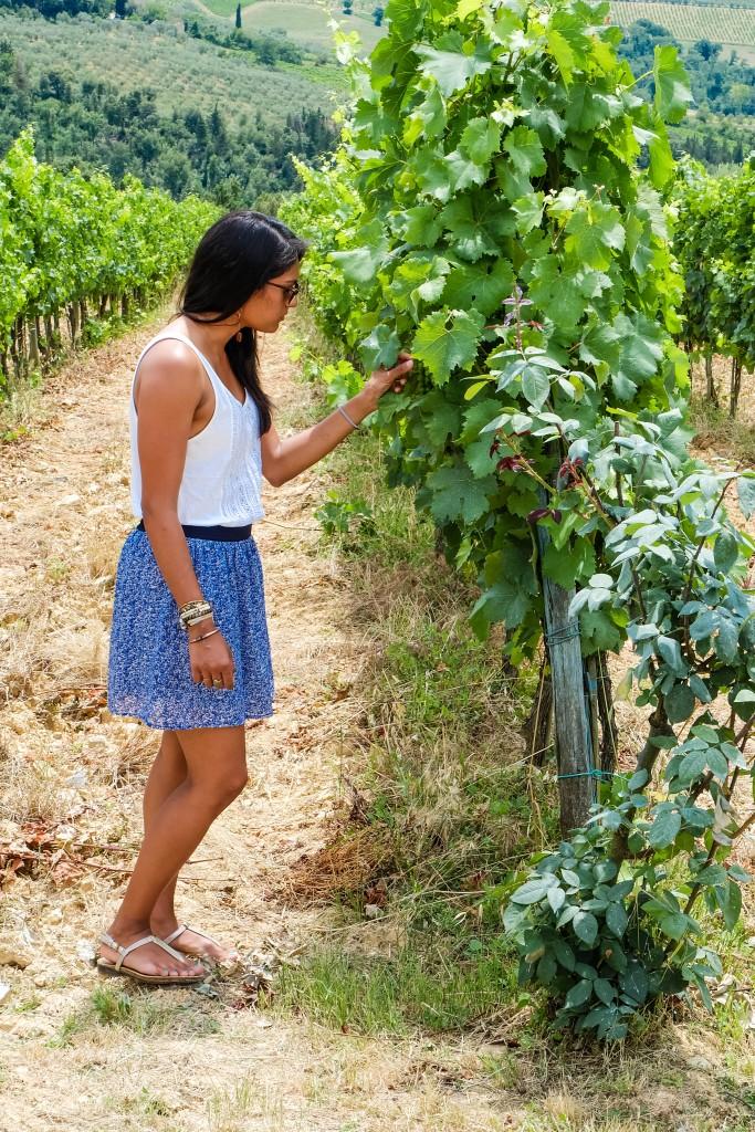 Tenuta Casanova Winery