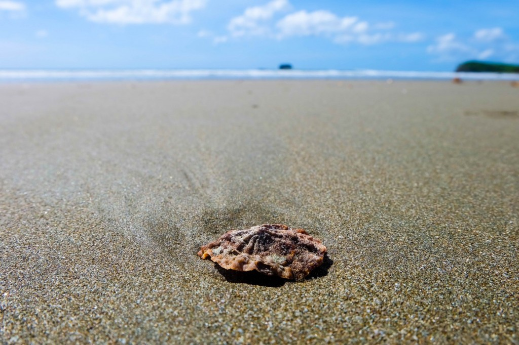 Hermosa Beach, San Juan del Sur