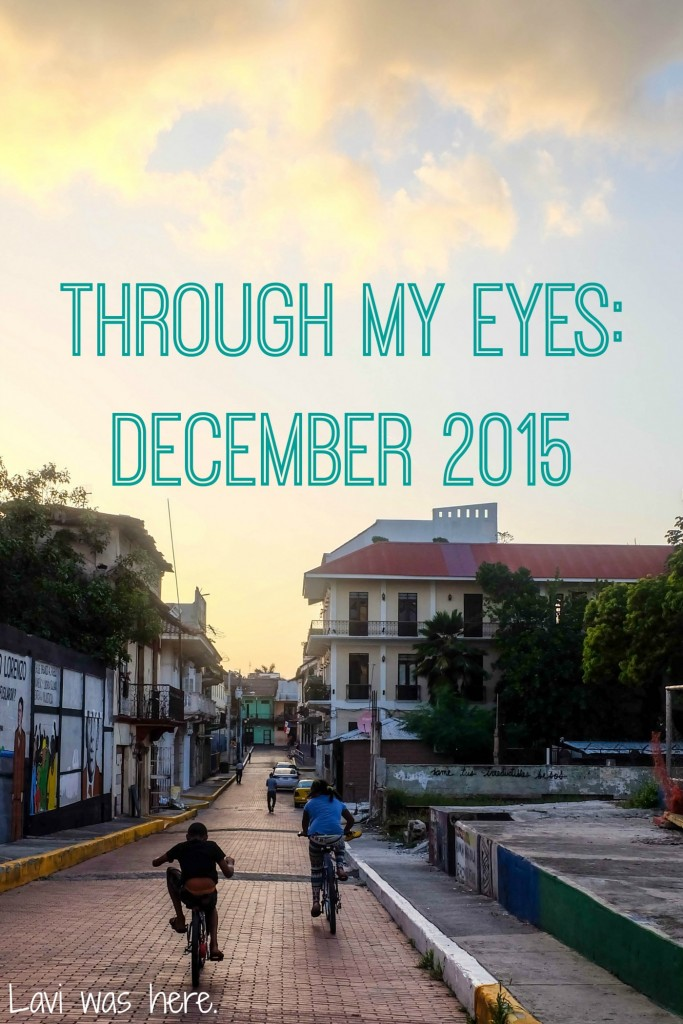 Through My Eyes: December 2015 | As much fun as I had, last month was not without its bumps and bruises. Here's what December looked like through my eyes.