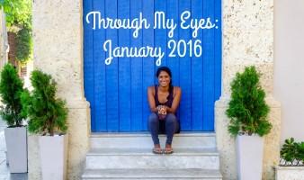 Through My Eyes: January 2016