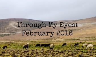 Through My Eyes: February 2016