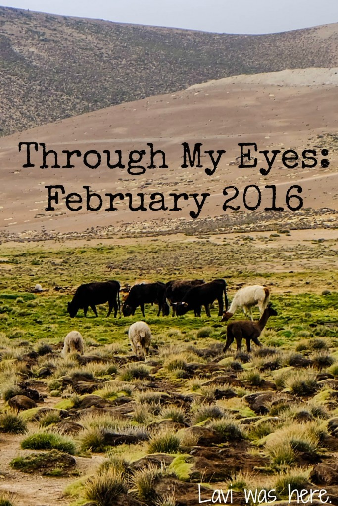 Through My Eyes: February 2016 | February was an awesome and exciting month in which I reunited with a few friends and visited some incredible places in Ecuador and Peru!