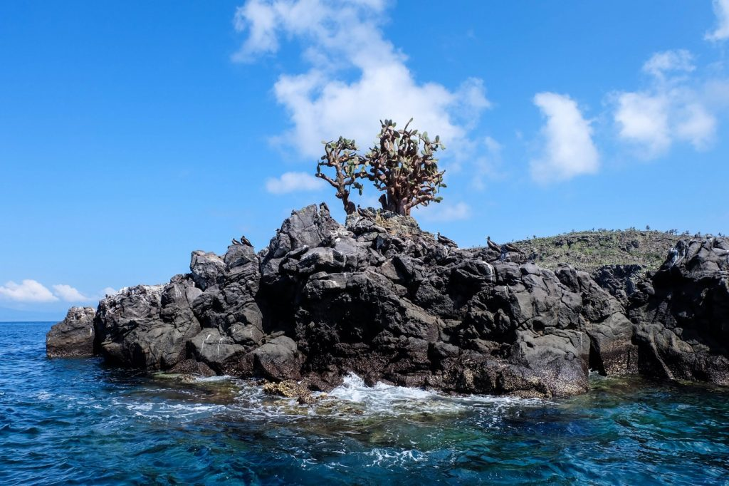 7 Things to Know Before You Visit the Galapagos Islandsthings to know before you visit the Galápagos Islands