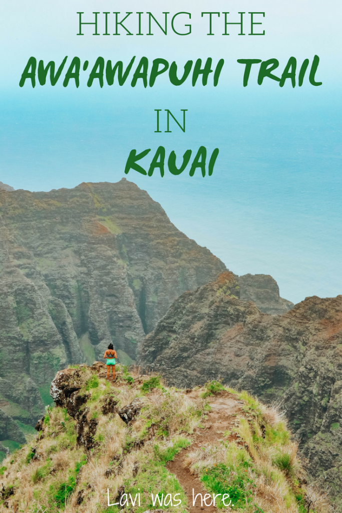 Hiking the Awa'awapuhi Trail in Kauai | Looking for one of the best coastal hikes in Kauai? Hiking the Awa'awapuhi Trail was a major highlight of our Kauai trip. It was worth every step of the 6.7 miles to see the Napali Coast. Here's what you need to know before you go.