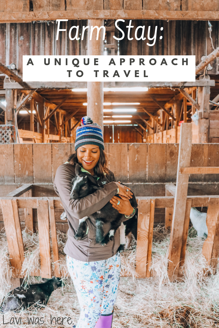 Farm Stay: A Unique Approach to Travel | Do you travel to relax, have an adrenaline-pumping adventure, or perhaps to try something new? I am a traveler that wants to experience a bit of everything while traveling, but I'll be the first to admit that a farm stay wasn't the first experience to come to mind, but it should have been. Here's why. | Lavi was here.