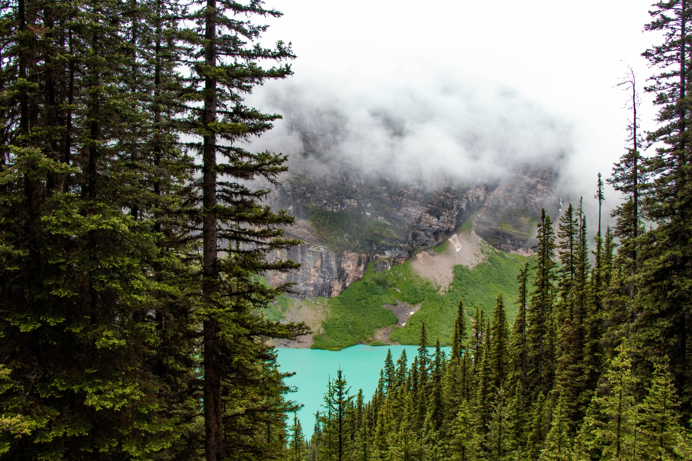 Lake Agnes Tea House Hike in Banff | Top 10 Photography Spots in Banff National Park