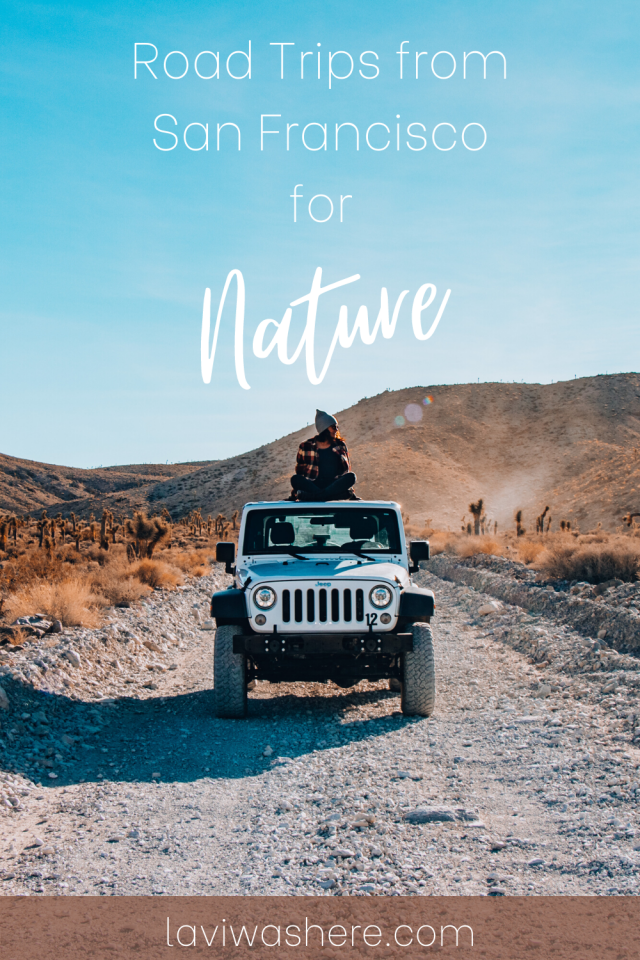 Road Trips from San Francisco for Nature | These road trips from San Francisco are at least one hour away and will feed your wanderlust without having to leave the state. | Lavi was here.