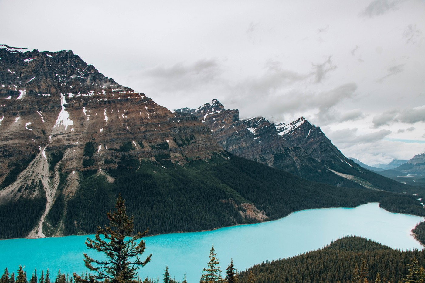Peyto Lake | Top 10 Photography Spots in Banff National Park